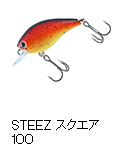 STEEZスクエア100